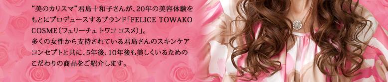 Felice Towako Cosme(フェリーチェ トワコ コスメ) ザ・十和子スタイル セレブビューティー